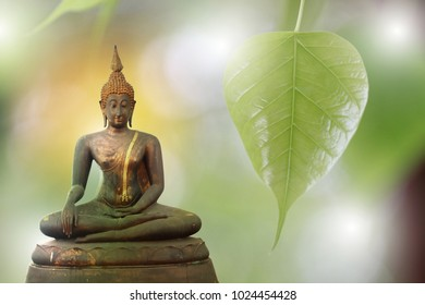 Buddha statue and green leaves are the background