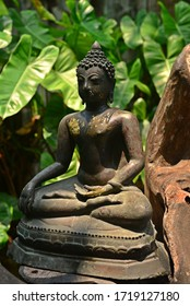 Buddha Statue with Light and Shadow, Thailand