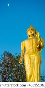 Buddha statue and moonlight