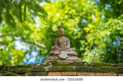 Buddha statue on nature bokeh background.