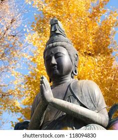 Buddha statue sensouji asakusa temple, asakusa, tokyo, Japan