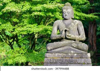 Buddha statue sitting in a beautiful green garden.