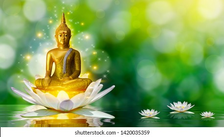 Buddha statue water lotus Buddha standing on lotus flower on orange background