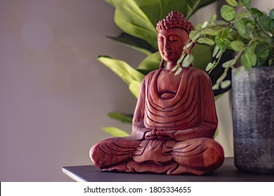 Buddha statuette home decoration near green plants