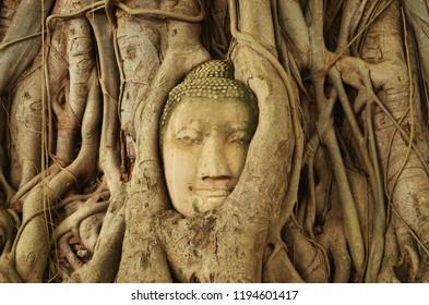 Buddha's Face Statue in Ayutthaya