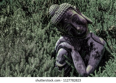 Buddhism and nature. High-contrast image of traditional an ornamental Buddha statue amongst evergreen garden plants.