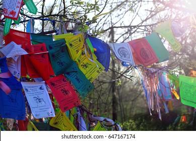 Buddhism prayer flags lungta with om mani padme hum buddhist mantra
