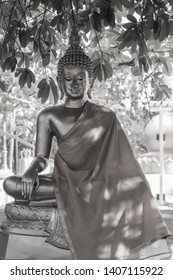 Buddhism or Buddhism is a religion that has a Buddha as a prophet. There is a doctrine that His Enlightenment likes by Himself.
