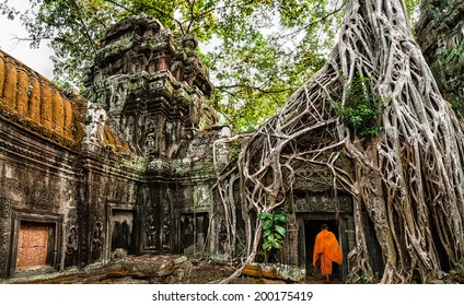 Buddhist monk at Angkor Wat. Ancient Khmer architecture, Ta Prohm temple ruins hidden in jungles. Popular travel destination at Siem Reap, Cambodia