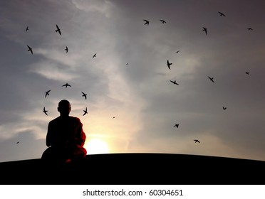 A buddhist monk in harmony as swallows swirling as he meditates.