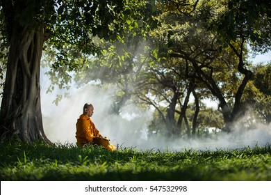 Buddhist monk meditating under a tree at Ayutthaya,buddhist temple  in Thailand