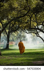 Buddhist monk meditating under a tree at Ayutthaya buddhist temple  monk Thailand,