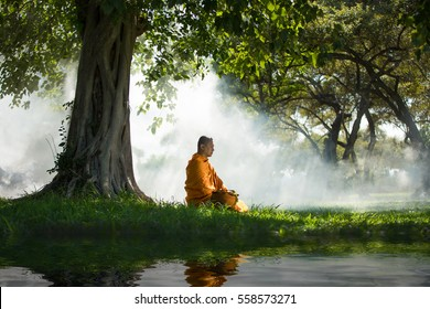 Buddhist monk meditating under a tree Ayutthaya, Thailand