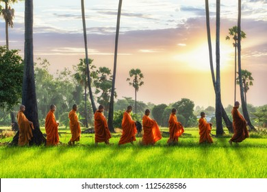 Buddhist monk and Buddhist novice with good spiritual going about with alms bowl to receive food from people in morning by walking in row across rice field with palm trees to village in Thailand