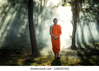 Buddhist Monk Walking for Receive Food in the morning at the forest, Thailand. Buddhist Monk Thailand, Monk.