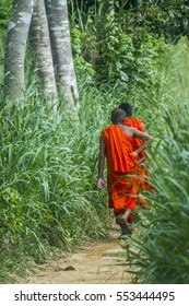 Buddhist monk walking in Sinharaja Forest Reserve, Sri Lanka