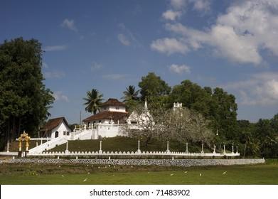 Buddist temple in Sri Lanka ( Pilana Purana Sri Maha Viharaya)