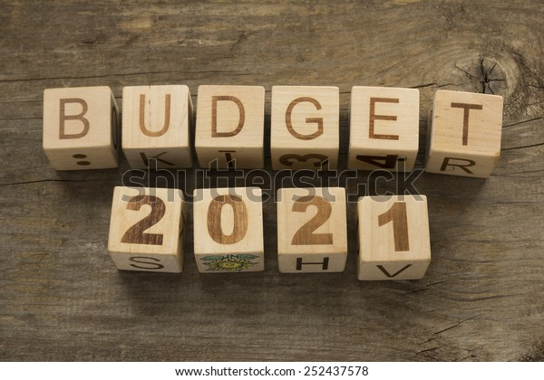 budget 2021 - photo #22