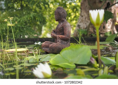 budha statue on lotus pond
