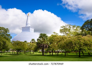 Budhist stupa Ruwanweliseya in Anuradhapura, Sri Lanka. White stupa with golden top in background with green park palm tree and grass field in foreground. Stupa Ruwanweliseya, Anuradhapura, Sri Lanka