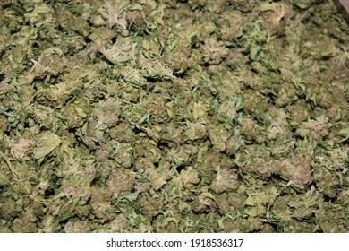 Buds in a bin. Marijuana weed