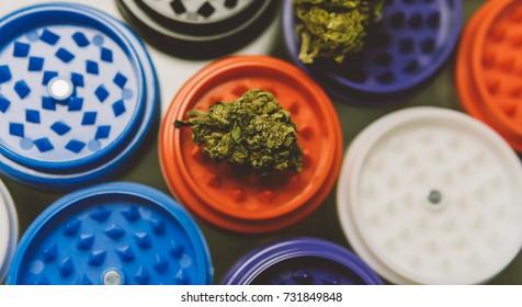 buds of marijuana, weed lying on colored grinders closeup . Smoking accessories