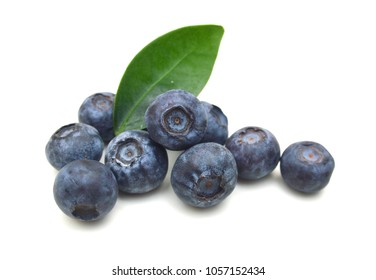 Bueberry on white background