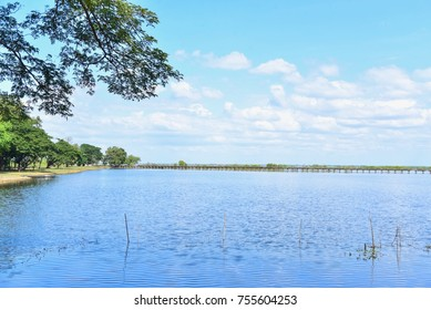 Bueng Boraphet, the Largest Fresh Water Swamp in Thailand
