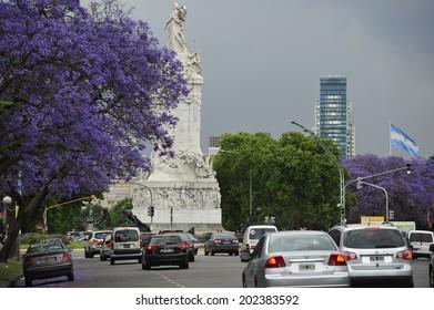 Buenos Aires, Argentina, - November. 22. 2010: Jacaranda tree in full bloom near Palermo Park, Buenos Aires, Argentina
