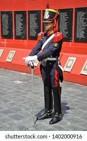 BUENOS AIRES / ARGENTINA - OCTOBER 6 2009: Honor guard in full regalia with purple tunic, riding boots, shako, white gloves and saber stands guard at Islas Malvinas-Falkland Islands War Memorial.