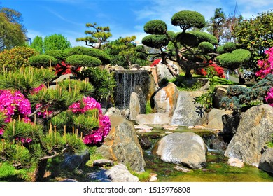 Buenos Aires, Argentina - September 25, 2019. Landscape of the waterfall, flowering trees and bonsai in Japanese Garden in Palermo district.