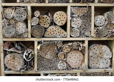 Bug hotel in a wooden frame for insects to breed and overwinter in with holes drilled in logs, grass stems and bamboo canes.