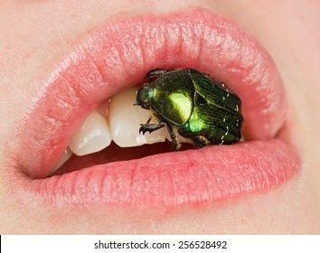bug in mouth