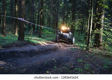 buggy off-road forest
