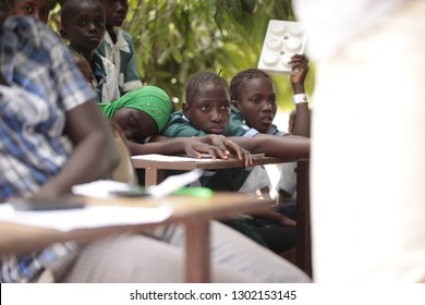 Buiba, the Gambia, Africa, May 22, 2015: horizontal photography of a group of african elementary school kids in white and green uniforms, sitting outdoors on a sunny day under a mango tree