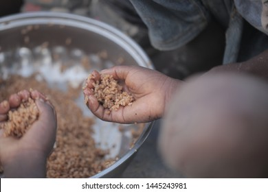 Buiba, Gambia, Africa, May 29, 2018: horizontal photography of a silver basin full of brown rice, with black children hands reaching for the food, outdoors with natural light