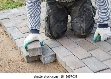 builder in gloves lays paving stones in layers on garden pathway. Laying gray concrete paving slabs in courtyard on leveled sand foundation base. Road Paving, construction, repairing sidewalk.