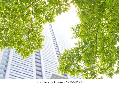 Building, green