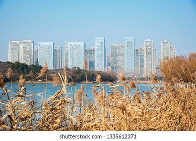 Buildings on the shores of Emerald Lake in Hefei City