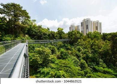Bukit Merah, Singapore - January 06, 2016: part of the Southern Ridges, a 10-kilometre trail that connects parks along the southern ridge of Singapore.