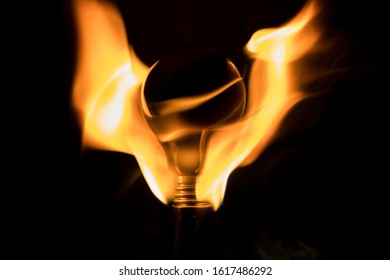 bulb burning with fire wings