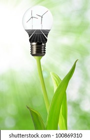 Bulb with of solar panel and wind turbines
