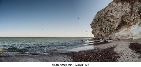 Bulbjerg bird fjeld cliffs at the North Sea Coast in Denmark