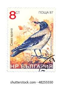 BULGARIA - CIRCA 1987: A stamp printed in Bulgaria showing birds, circa 1987
