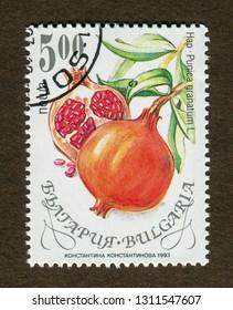 Bulgaria stamp no circa date: A stamp printed in Bulgaria shows Pomegranate - Punica granatum illustration.