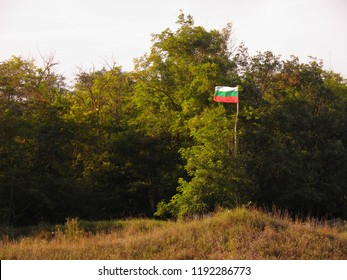 Bulgarian flag in the forest, bulgarian campers. Camping, hiking.