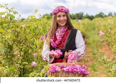 Bulgarian girl dressed in traditional dress picking roses during the Annual Rose Festival in Kazanlak, Bulgaria