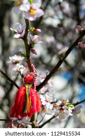 Bulgarian Martenitsa on a cherry tree closeup. National-Bulgarian traditional holiday symbol. Spring blossoming trees.