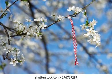 Bulgarian traditional custom spring sign Martenitsa on blosson tree branch against blue sky