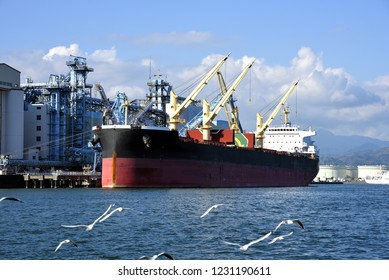Bulk carrier to transport resources